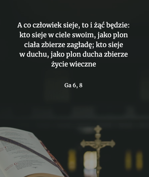Cytat z Biblii Ga 6,8