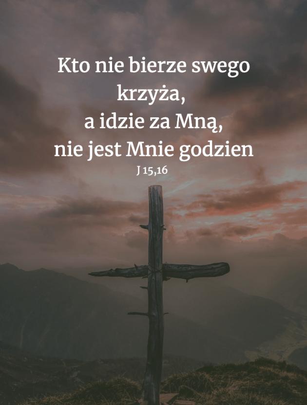 Cytat z Biblii [J 15, 16]